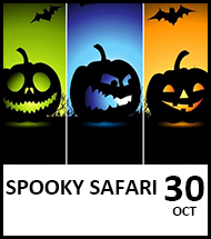 Booking link for Spooky Safari on 30th October 2021